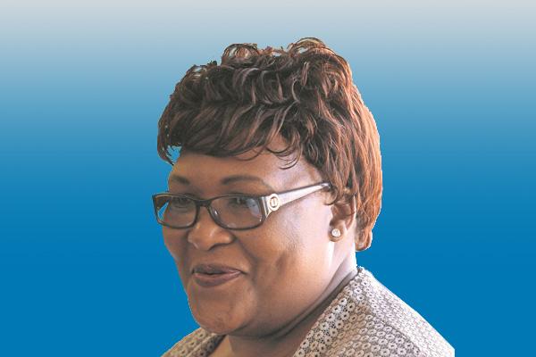 Provincial legislature human settlements Chairperson meeting